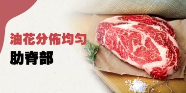 牛肉油花分佈最勻稱的部位 -肋脊部